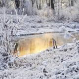 Vanliga problem under vintern